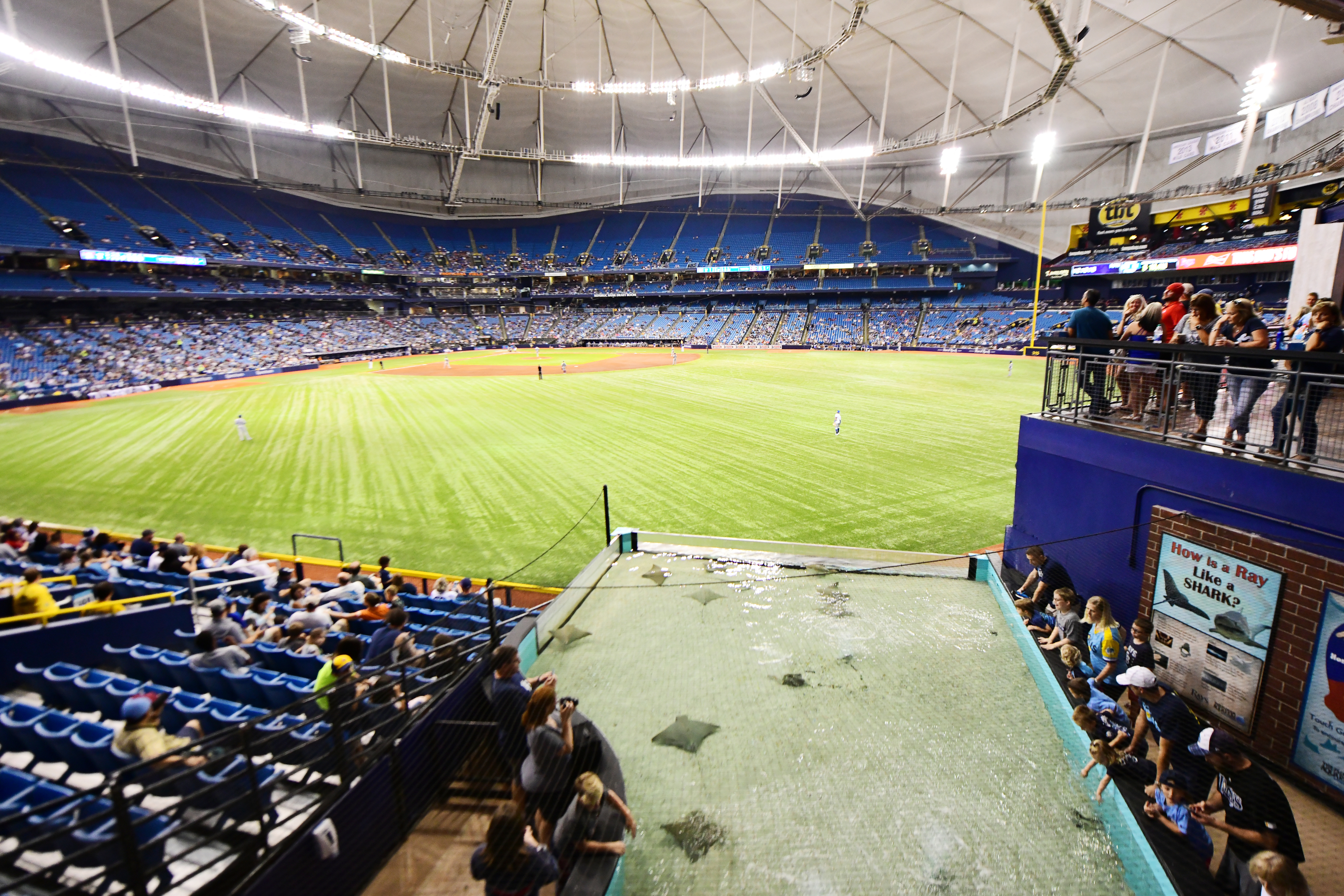 tampa bay rays show creativity in their new stadium plans https calltothepen com 2019 01 05 tampa bay rays show creativity new stadium plans